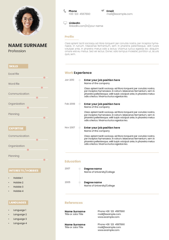 CV template for assistants